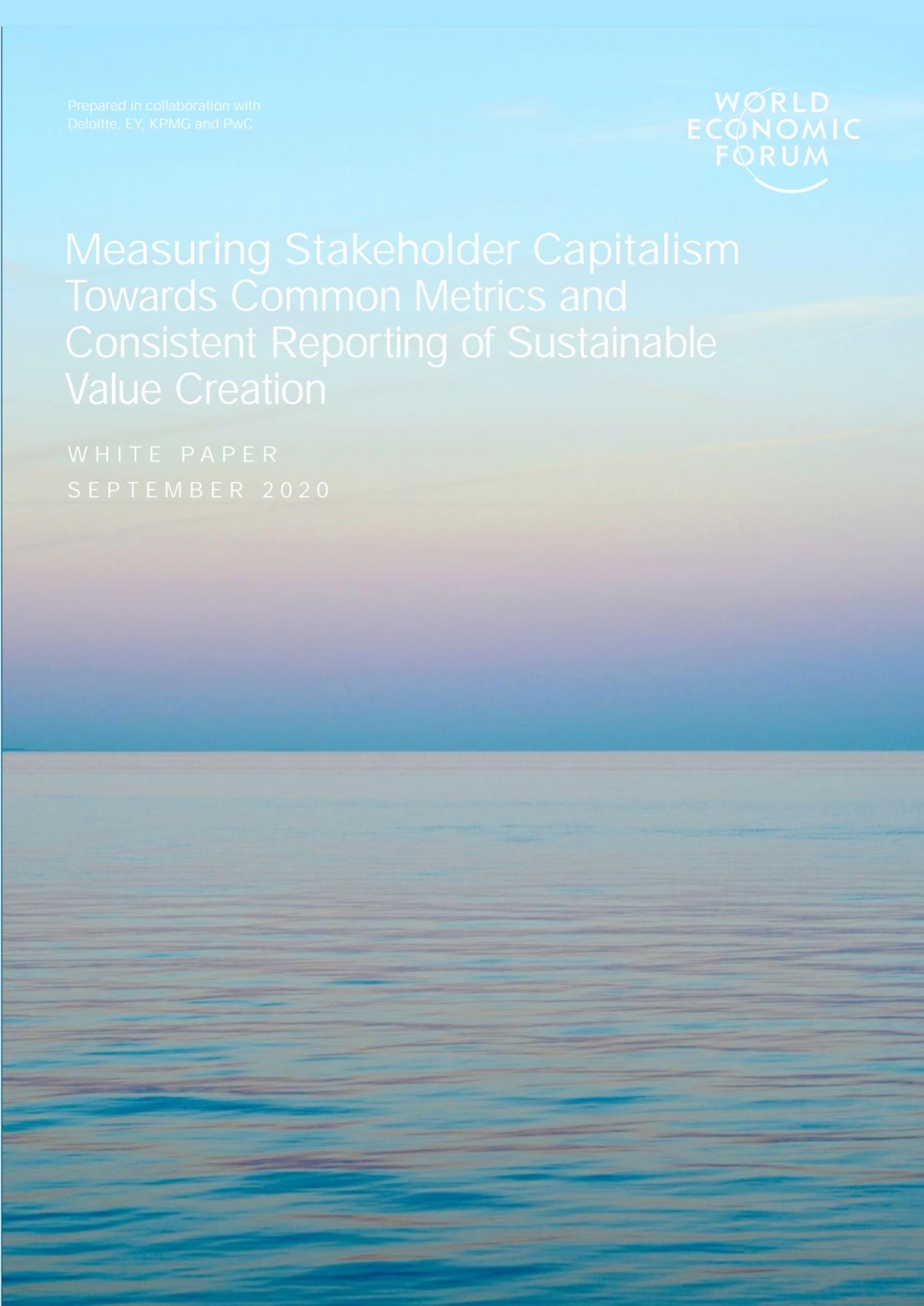 Отчет об измерении капитализма заинтересованных сторон